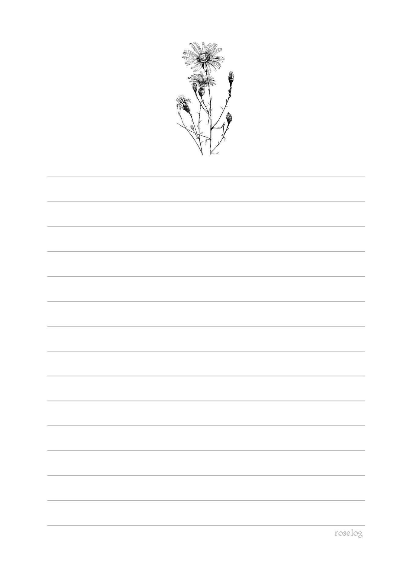 便箋 テンプレート 無料 シンプル a4 b5 おしゃれ かわいい|ボタニカル