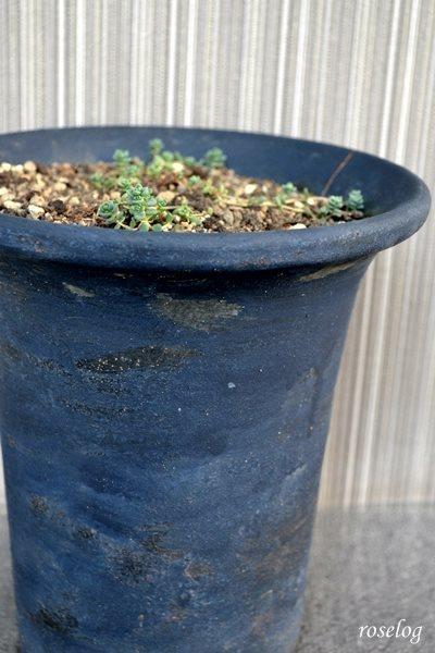 植木鉢 リメイク 作り方